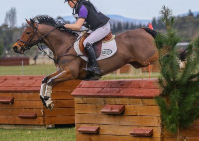 E471: Elite Pony 2* Eventer / Grand Prix SJer