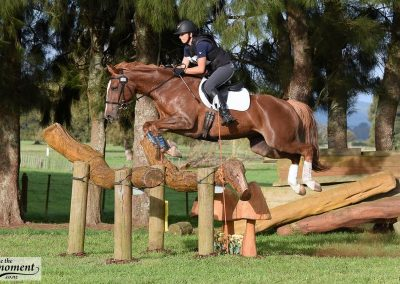 E465: Fancy Experienced Junior / Amateur 2* Mare
