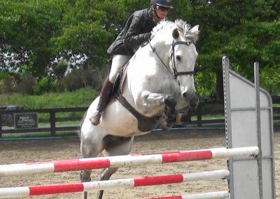 E461: Classy Talented Junior Rider / Amateur Prospect
