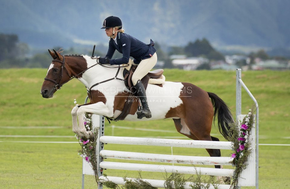 P12: Successful Dressage and Jumping Pony