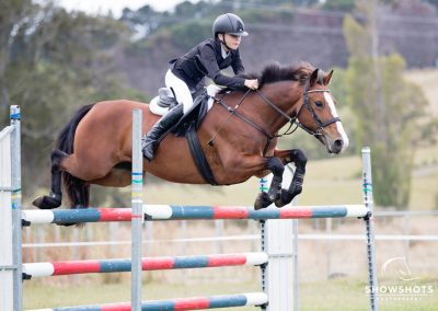 P11: Brilliant Jumping All Rounder Pony