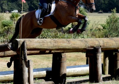 E458: Experienced Safe 3* Schoolmaster Eventer