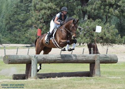 E468: Young TB Eventer Oozing Talent