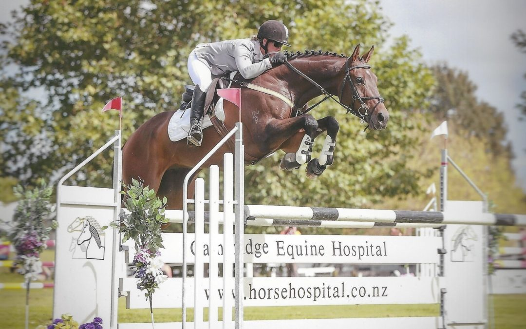 SOLD in NZ !!!  Genuine Safe 3* Eventer